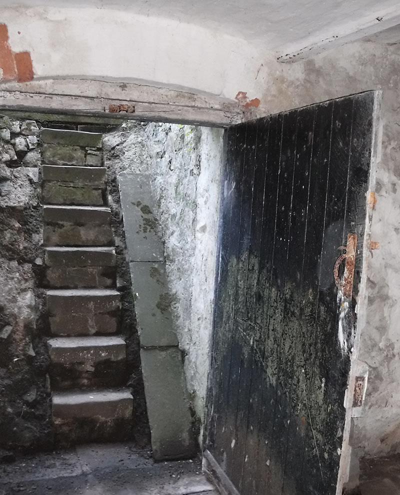 before picture of cellar door